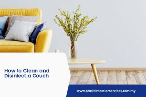 How to Clean and Disinfect a Couch